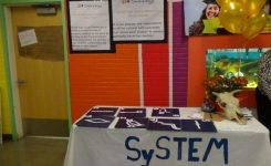 SySTEm is involves learning about language and symbols